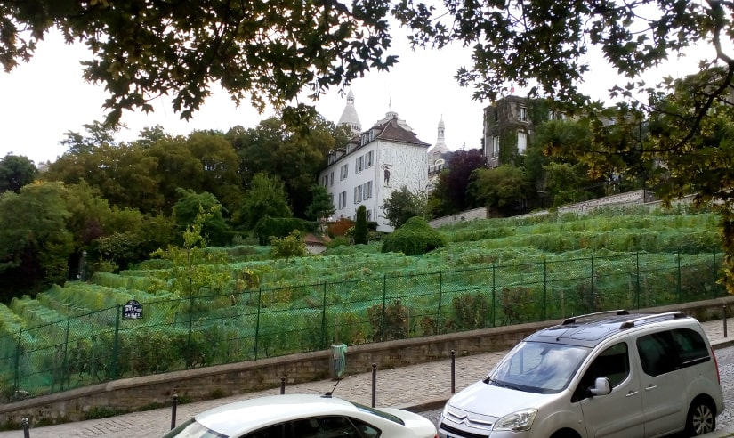 The Clos de Montmartre (Montmartre Vineyard) and the steep incline of the Rue des Saules from Place Robert Dorgeles Montmartre. Rue des Saules is difficult for wheelchairs because of the incline and the cobbles.